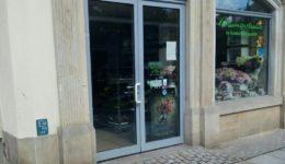 Blumenstudio