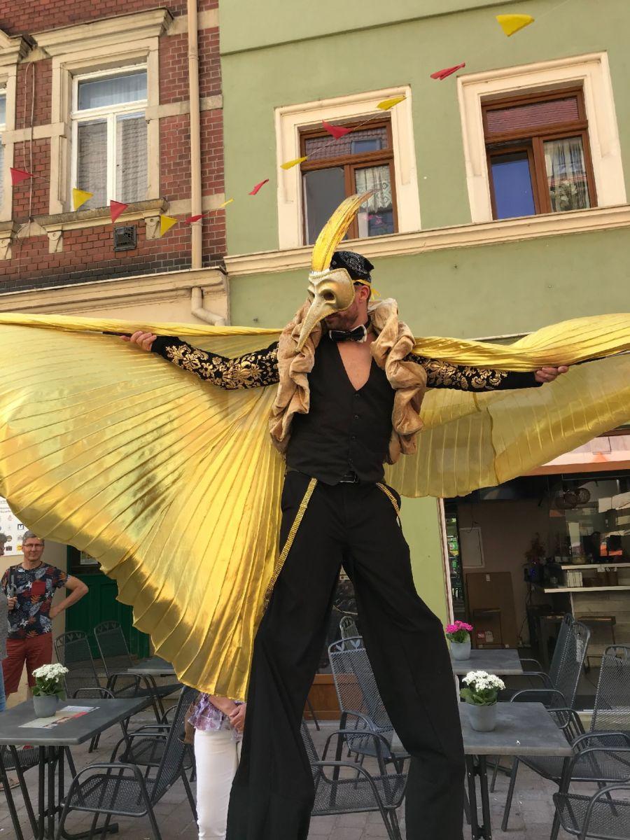 210703_pirnaerleben-1. Straßenkultursamstag (2)